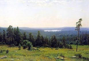 Описание картины И. И. Шишкина «Лесные дали»